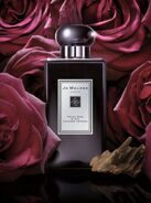 Joo-Mallone velvet rose & oud cologne intense 100ml