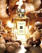 Joo-Mallone nutmeg & ginger cologne 100ml